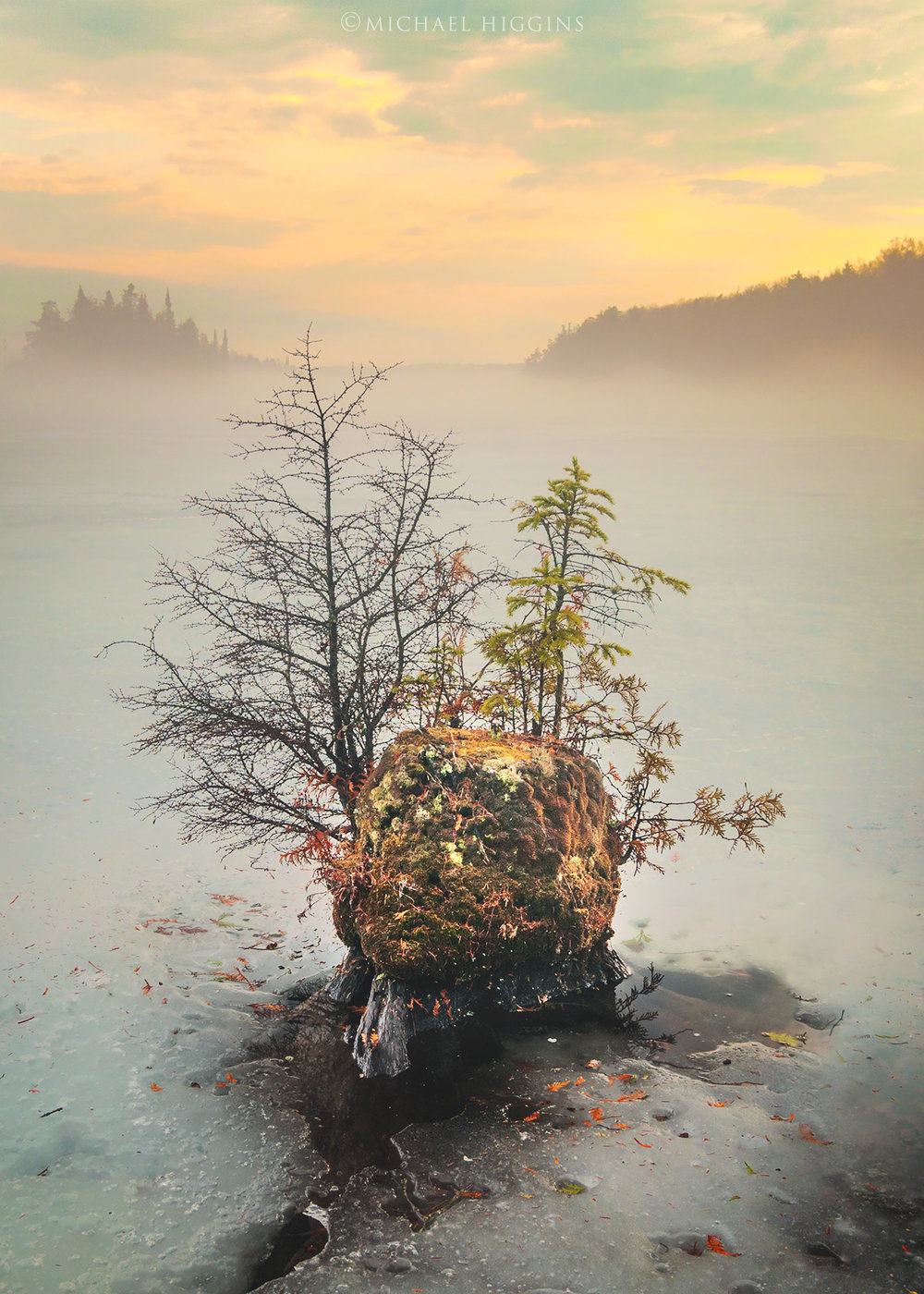 """Bonsai Island"" - Photographer: Michael Higgins"