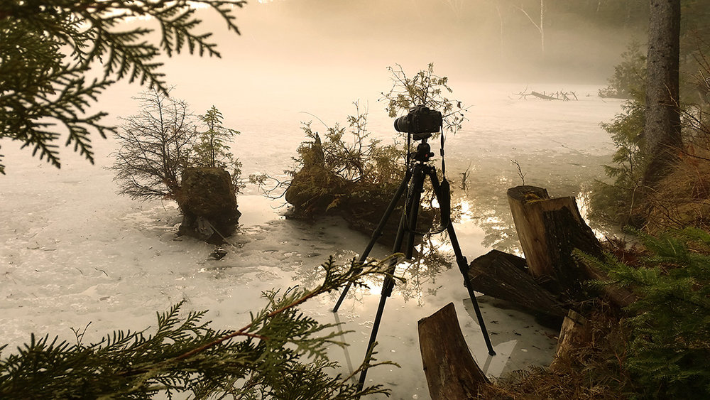 "A pull-back image of Michael Higgins' set-up while taking ""Bonsai Island"""