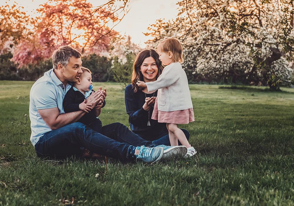Apple Blossoms Ottawa Arboretum