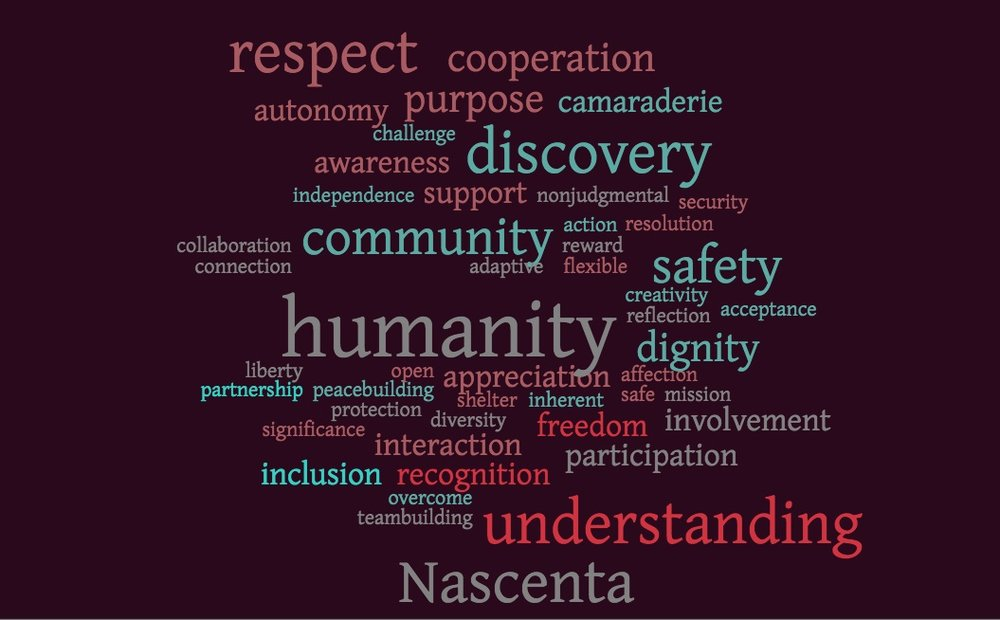 humanity_diversity_wordcloud.jpg