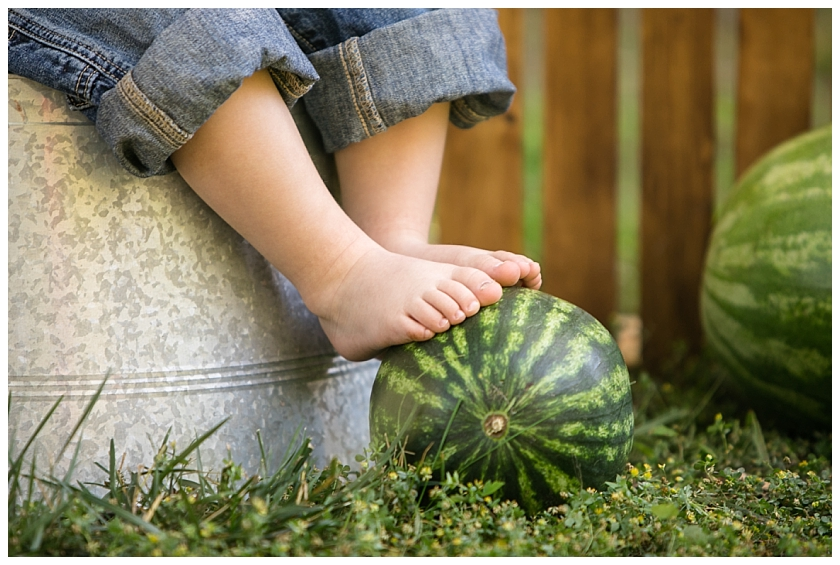 Watermelon mini session_South Jersey Family photographer_0019.jpg