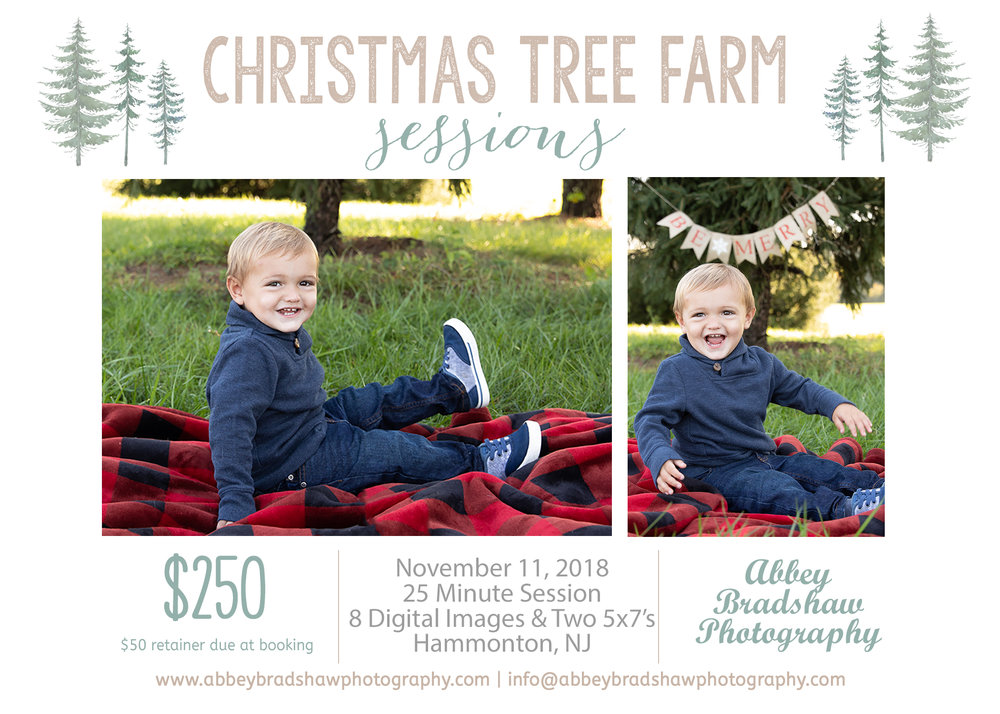 Christmas Tree Farm Minis 2018.jpg