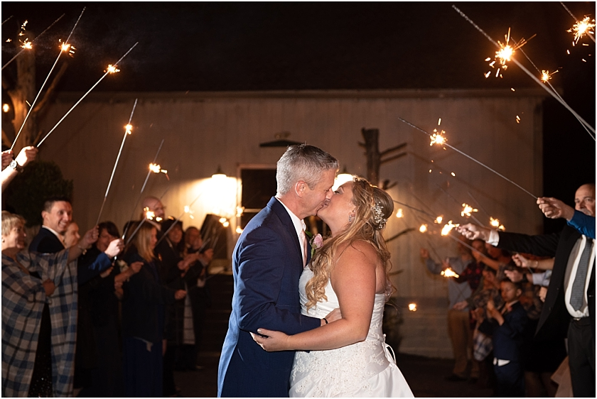 Rodes Barn Wedding_South Jersey Wedding Photographer_0064.jpg