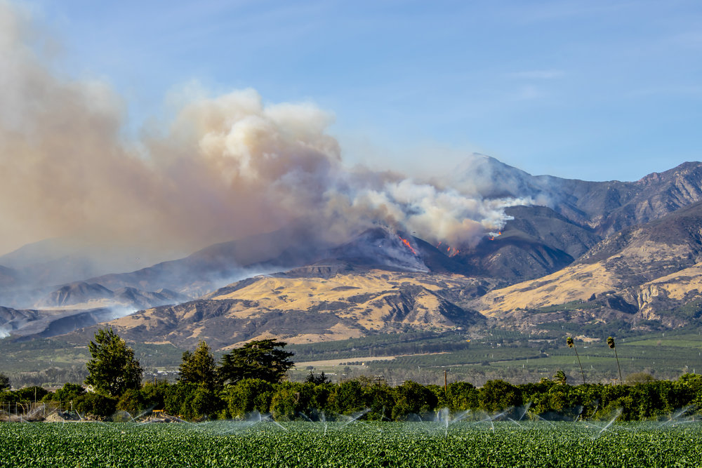 California wildfires—past, present, and future—have a significant impact on the quantity and quality of runoff water, which affects domestic, agricultural, and ecological water supplies