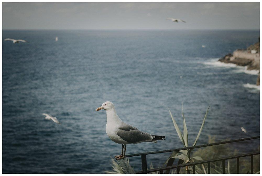 Inhar-Mutiozabal-Fotografo-Bodas-Gipuzkoa-San Sebastian-Donostia-Euskadi-Basque Country_0009.jpg