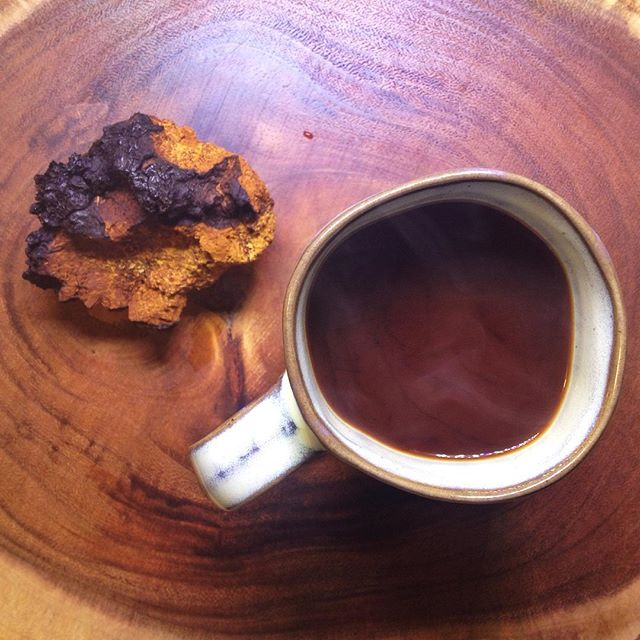 We sometimes like to drink our #mushrooms 🍄 we've got #Chaga along with some other #grounding #herbs in our mug to get us ready for #spring . . . . . . . #paudarco #dandelionroot #nutrientdense #tonic #tea #seasonalwellness #vegansofig #whatvegansdrink #plantbased