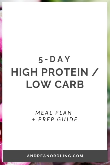 high protein low carb mini.jpg