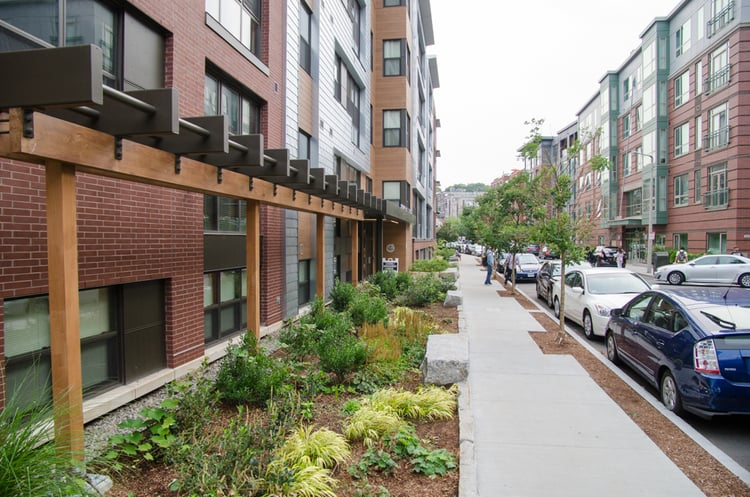 Reclaimed granite, ornamental grasses, and a largely native plant palette reflect the Owner's Zen aesthetic and desire for a sustainable -- LEED Platinum -- addition to the Allston Green District in Boston, MA