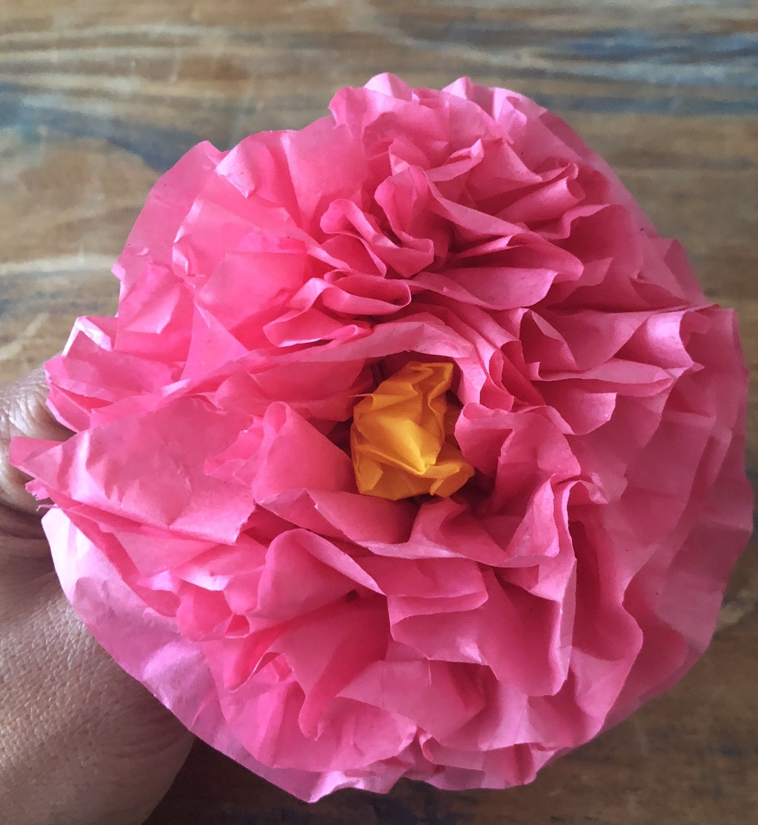 Magic Box Monday Crepe Paper Flowers Gina Carroll Has Something
