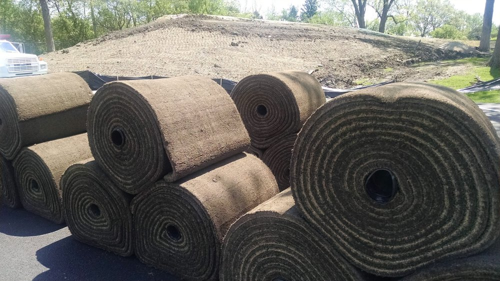 Bentgrass Big Rolls