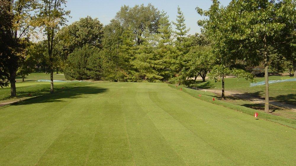 Bentgrass Install