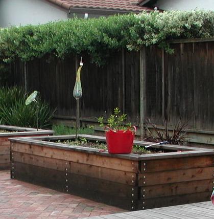 garden bed.png