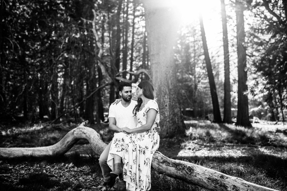 B&W Sun Flare Yosemite Couple Shoot