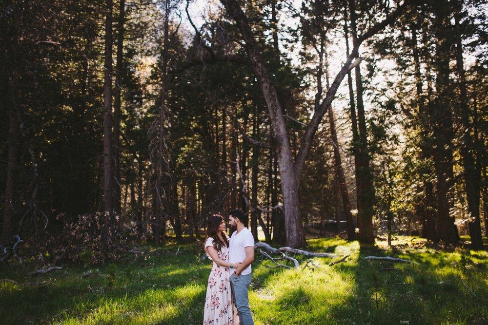 Yosemite Woods Couple Session
