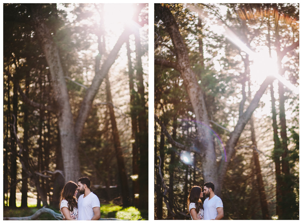 Yosemite Woods Engagement Session