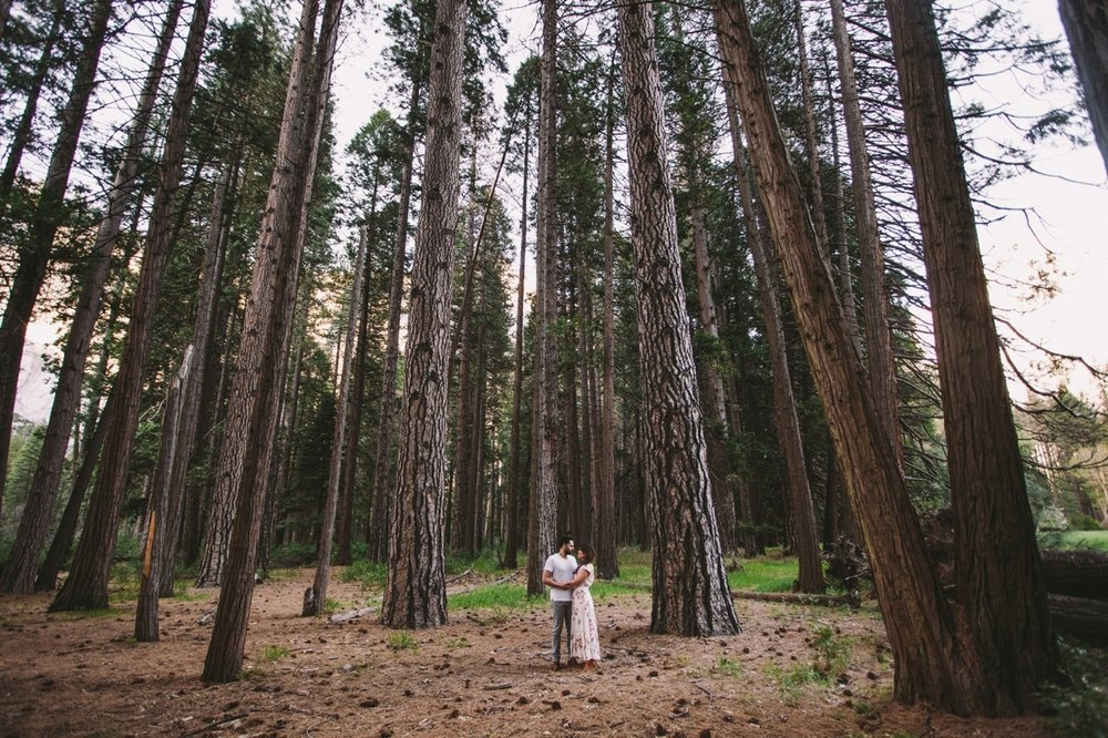 Couple in Ponderosa Pines Yosemite