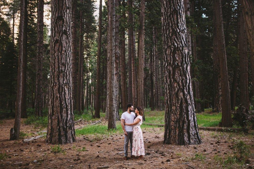 Couple in Yosemite Ponderosa Pine Woodland