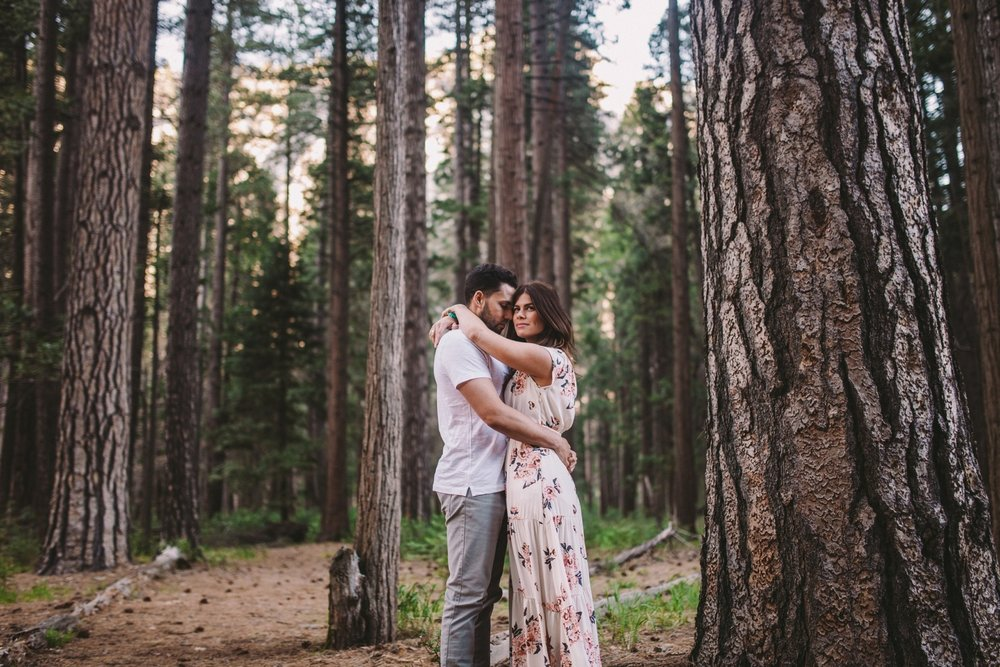 Ponderosa Pines Engagement Shoot