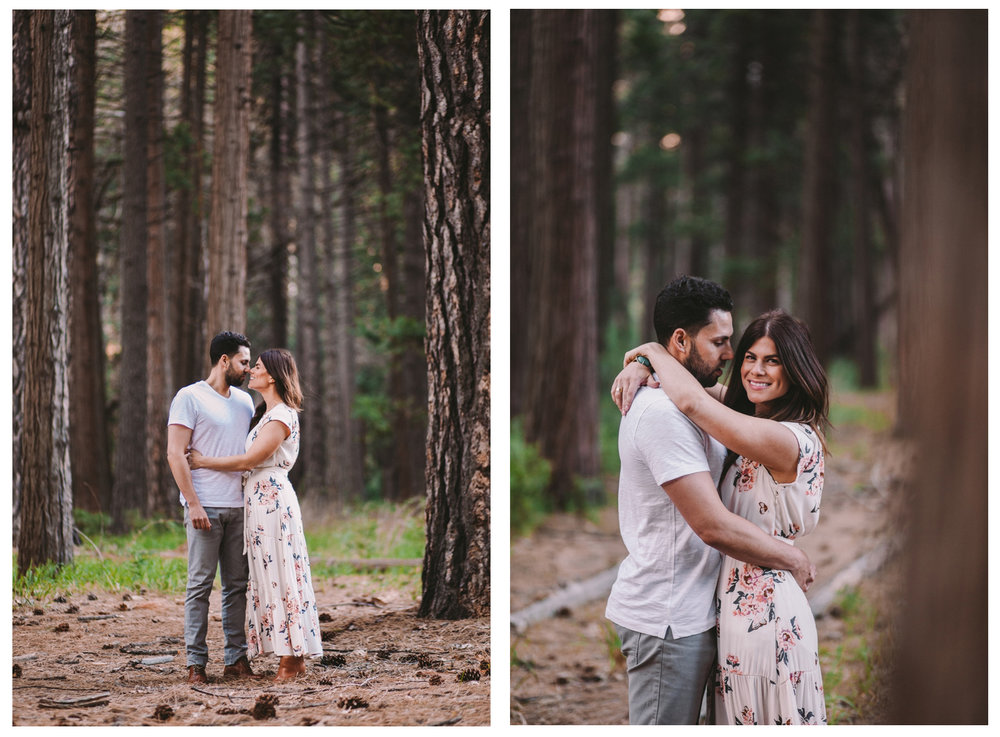 Engagement Shoot Yosemite Ponderosa Pine