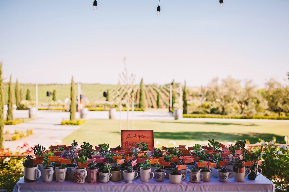 Pink & Orange Wedding Theme - Succulent Wedding Favor Table