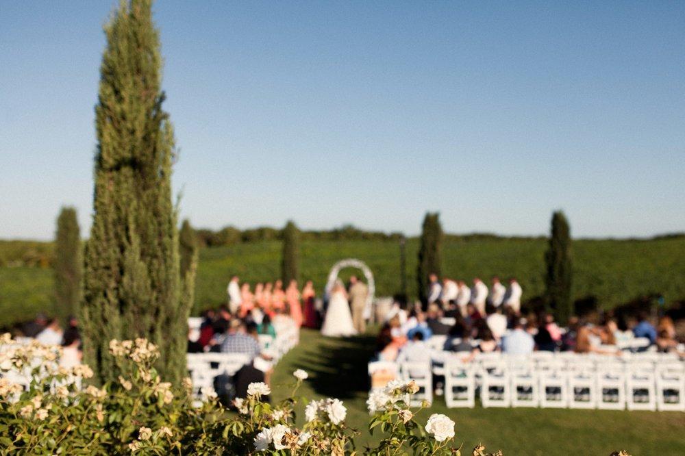 Toca Madera Winery Wedding Photography 89.jpg