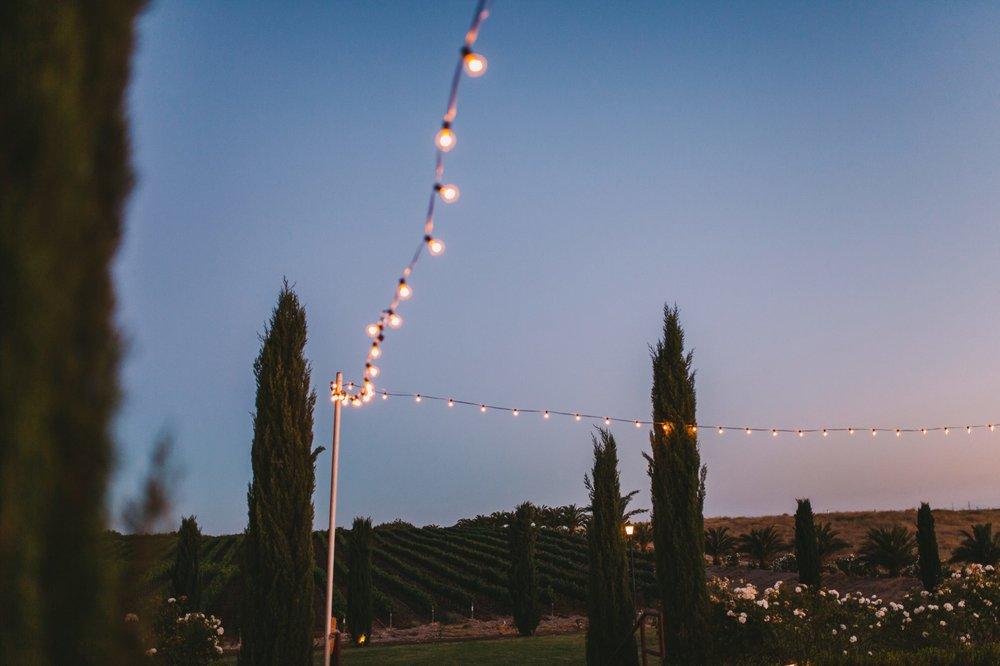 Toca Madera Winery Wedding Photography 151.jpg