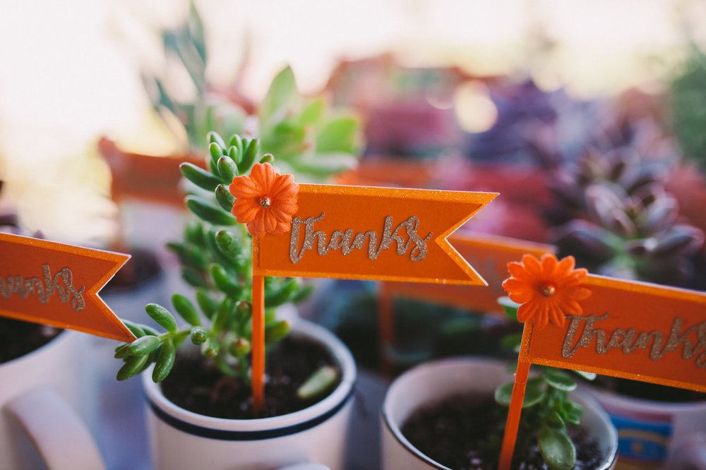 Succulent Wedding Favors with Orange Thank You Mini Flags
