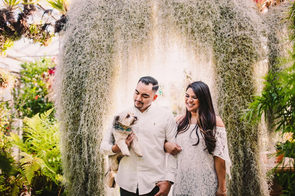 Shelldance Orchid Gardens Greenhouse Engagement Session Pacifica 21.jpg