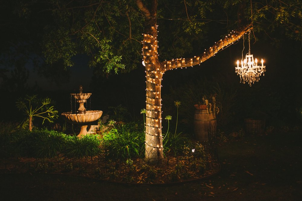 Falkner Winery Yard Garden Evening Wedding Reception
