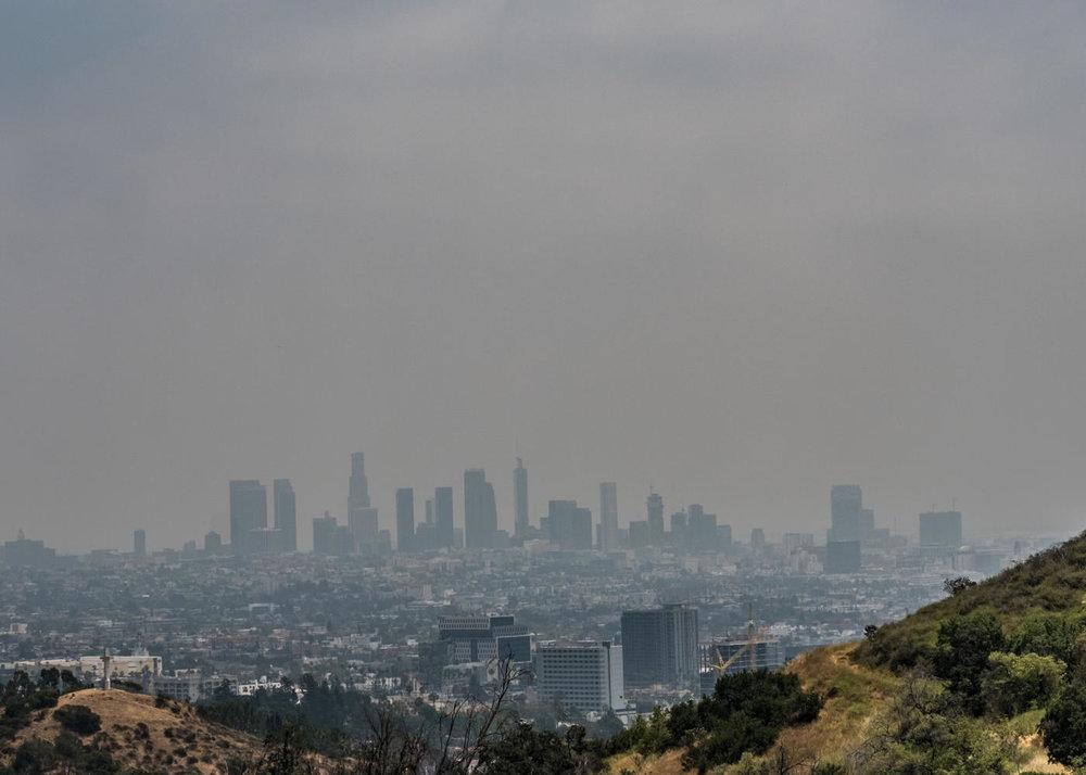 6856 Sunny Cove Los Angeles CA-large-025-26-6856 Sunny Cove26-1400x1000-72dpi.jpg
