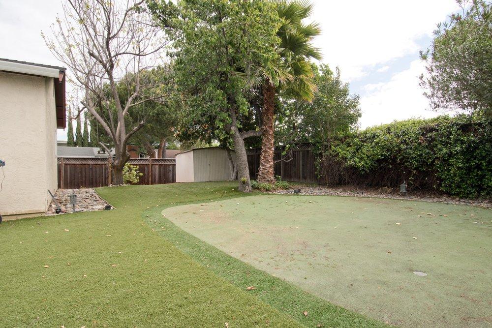 Yard 001.jpg