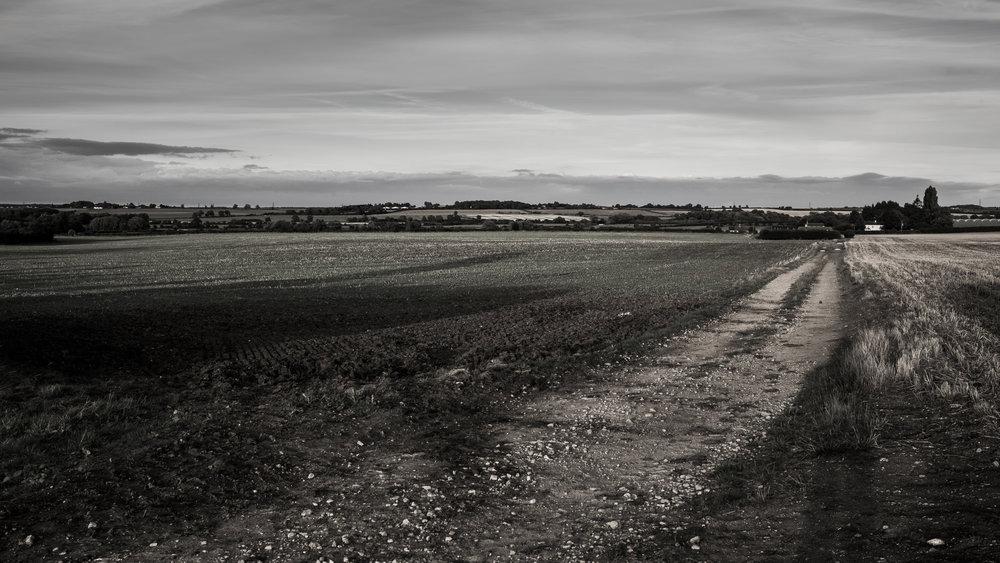 AgriculturalLandscape-13.jpg