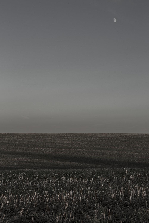 AgriculturalLandscape-16.jpg