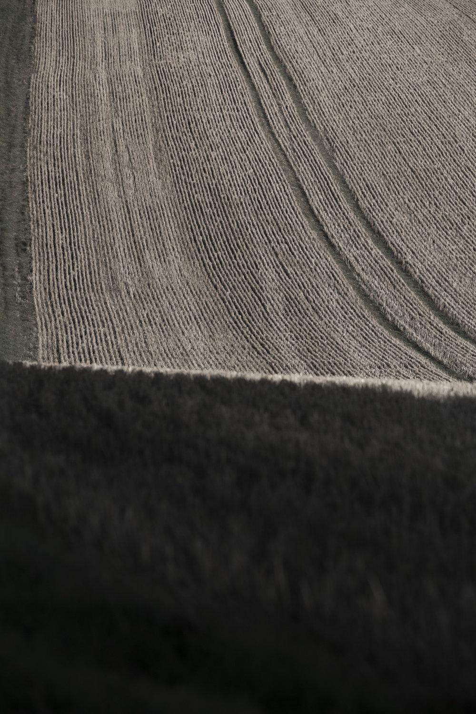 AgriculturalLandscape-14.jpg