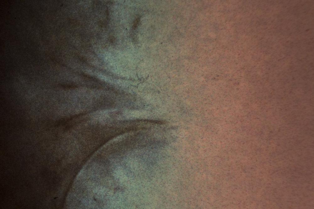 Microscopic_negative.jpg