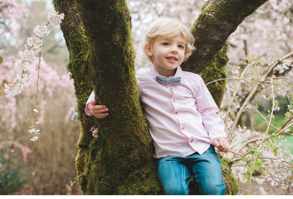 spring_Family_Lifestyle_Portrait_Session_Seattle_Arboretum_cherry_blossoms 1.jpg