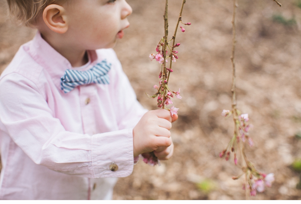 spring_Family_Lifestyle_Portrait_Session_Seattle_Arboretum_cherry_blossoms 4.jpg