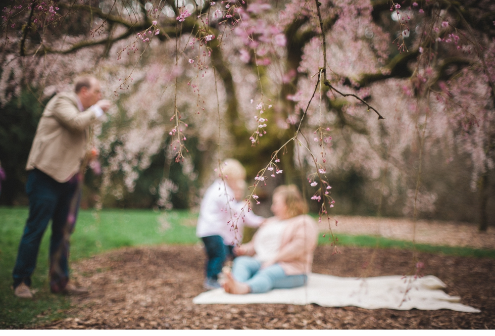 spring_Family_Lifestyle_Portrait_Session_Seattle_Arboretum_cherry_blossoms 28.jpg