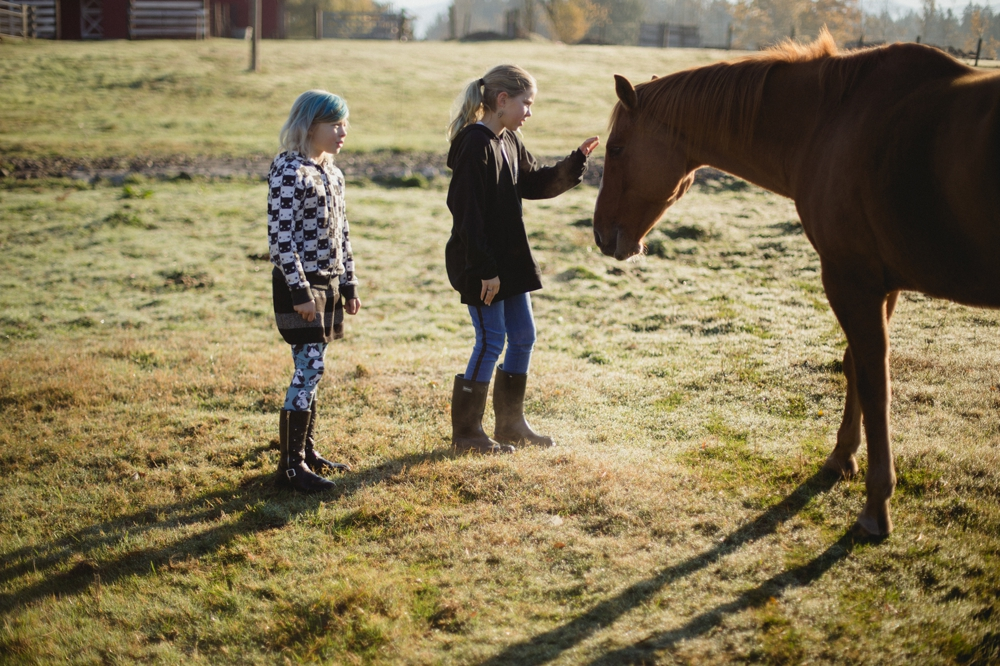 family_farm_fall_lifestyle_enumclaw_photographer 7.jpg