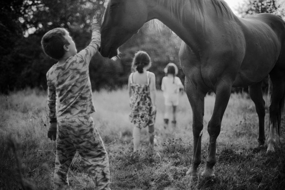 farm-sessions-enumclaw-family-photographer 3.jpg