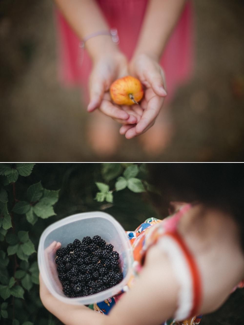 farm-sessions-enumclaw-family-photographer 7.jpg