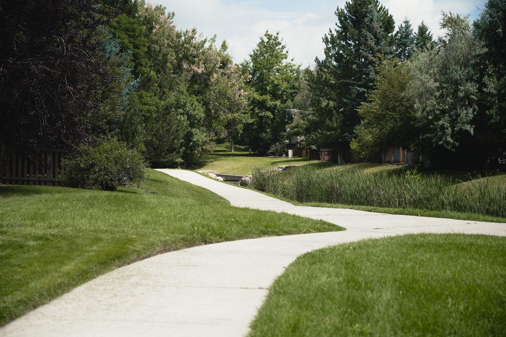 Birchwood-Walking Paths.jpg
