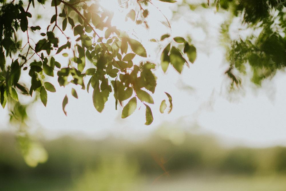 DallasWeddingPhotographer066.JPG