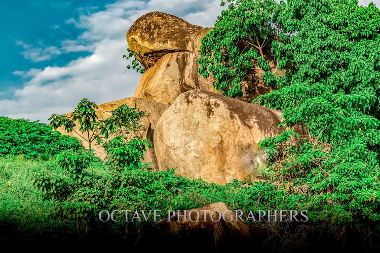 Octave Photographers