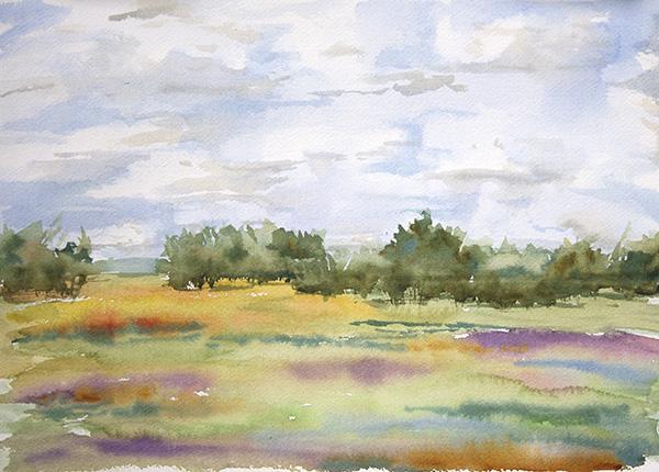 Late Summer Fields, Greene County