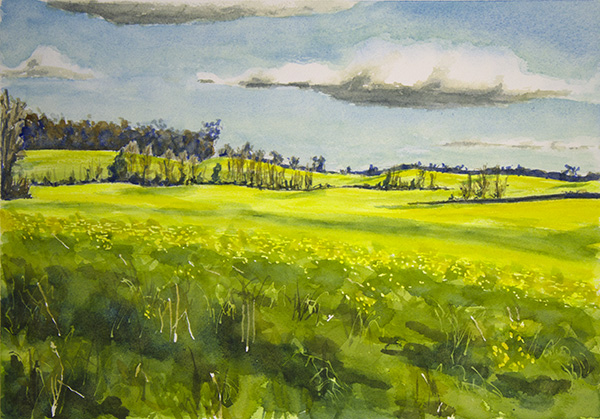 SOLD Butterweed Fields #2