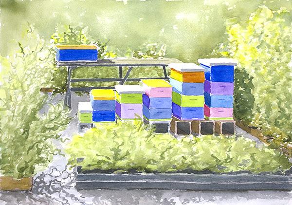 Beehives #2