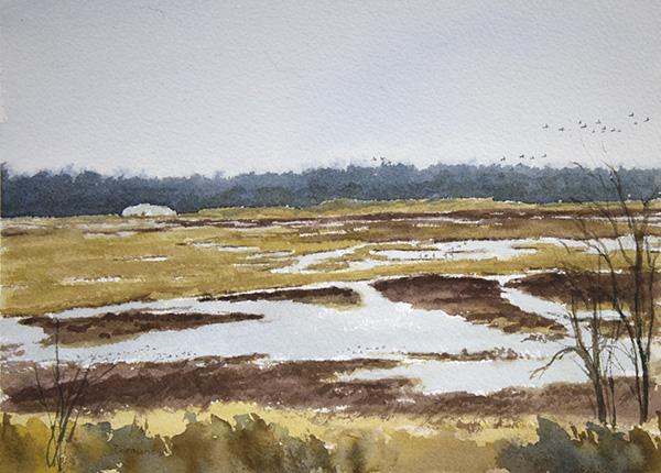 'Goose Pond, Ducks'