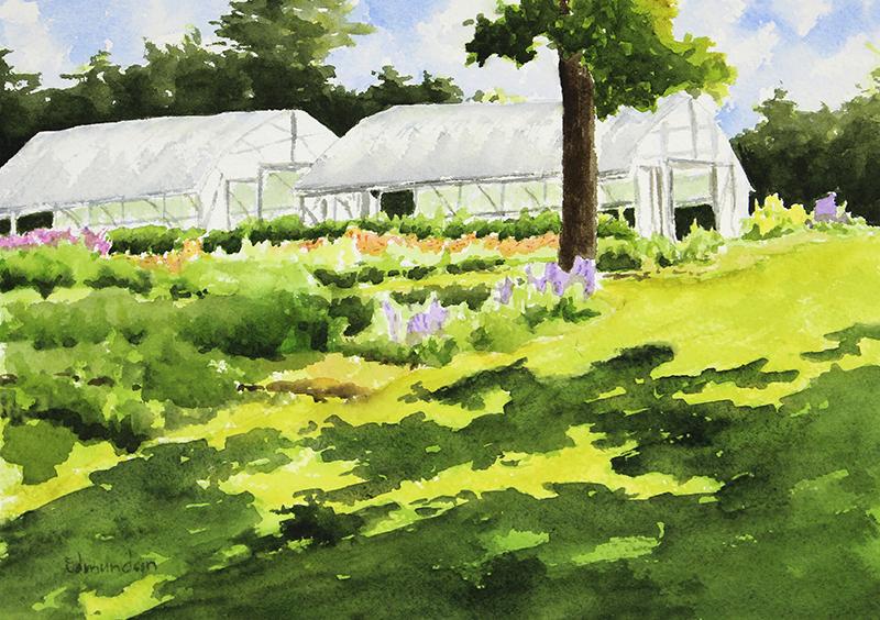Greenhouses, Harvest Moon Farm