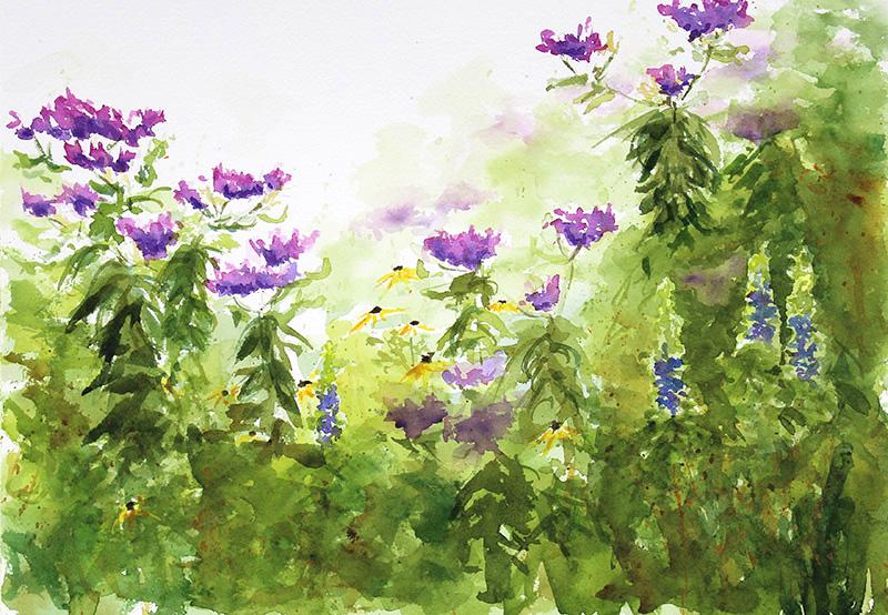 Ironweed & Wildflowers